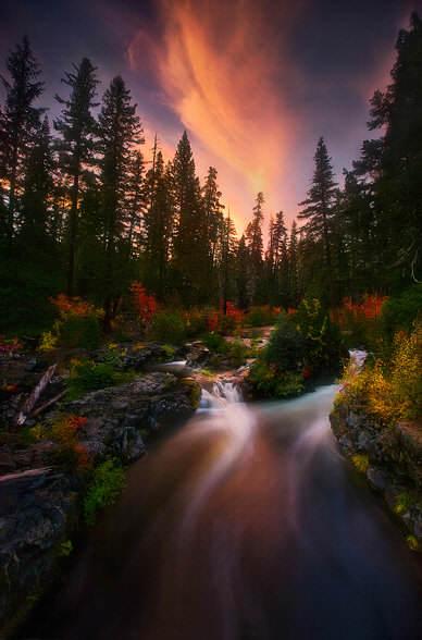 Реки и водопады в работах Марка Адамуса
